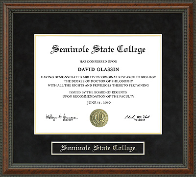 Seminole State College (SSC) Diploma Frame: Wordyisms