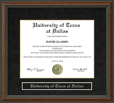 University of Texas at Dallas (UTD) Diploma Frame: Wordyisms