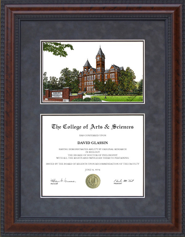 Diploma Frame with Licensed Auburn University Campus Lithograph ...