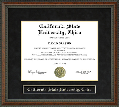 Chico State Diploma Frame Wordyisms