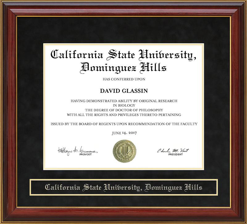 California State University Dominguez Hills Csudh