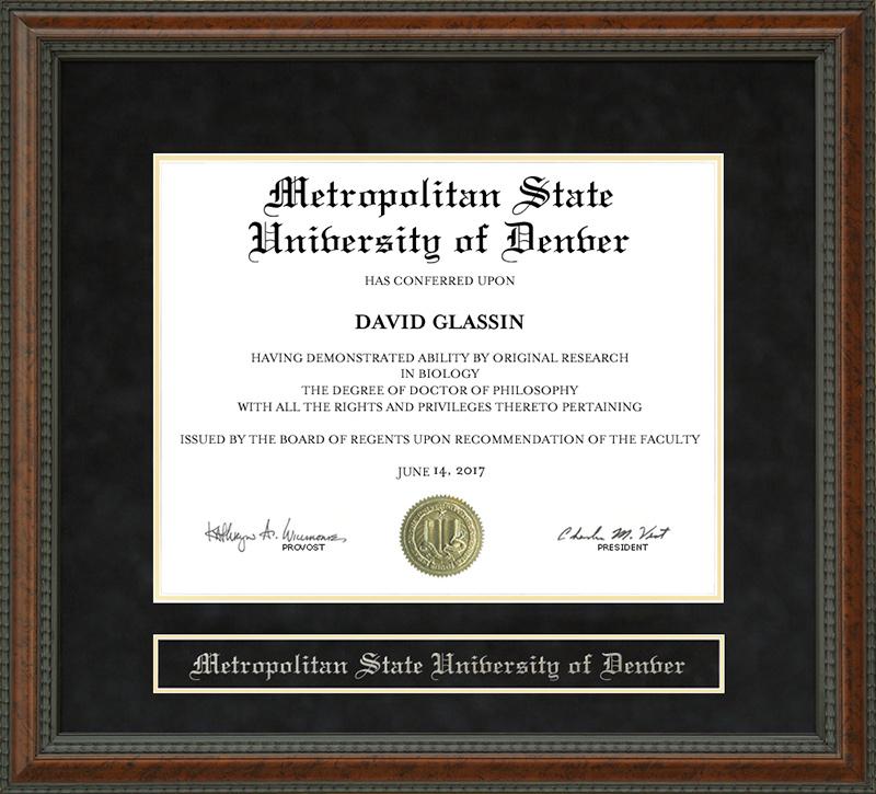 Metropolitan State University Of Denver Msu Denver