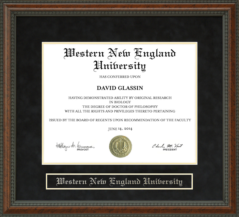 Western New England University (WNE) Diploma Frame: Wordyisms