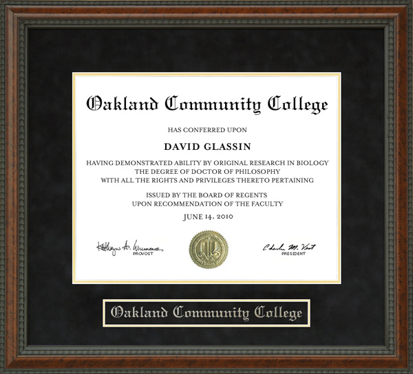 Oakland Community College Diploma Frame Wordyisms. How To Save Bookmarks In Chrome. Heartburn After Gastric Bypass. Online Geography Phd Programs. Self Directed Ira With Checkbook Control. African Child Sponsorship Dj Sbu Hiv Positive. Philosophy Of Christian Higher Education. Orion School Redwood City Claim A Domain Name. Carpet Cleaning Gallatin Tn Dairy Land Auto