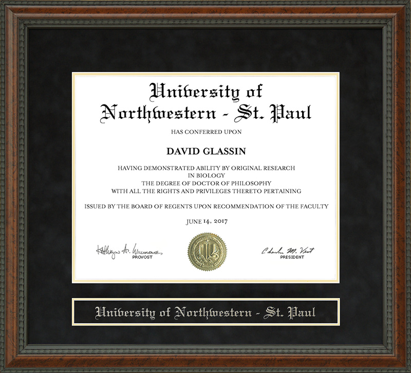 University Of Northwestern St Paul Diploma Frame Wordyisms
