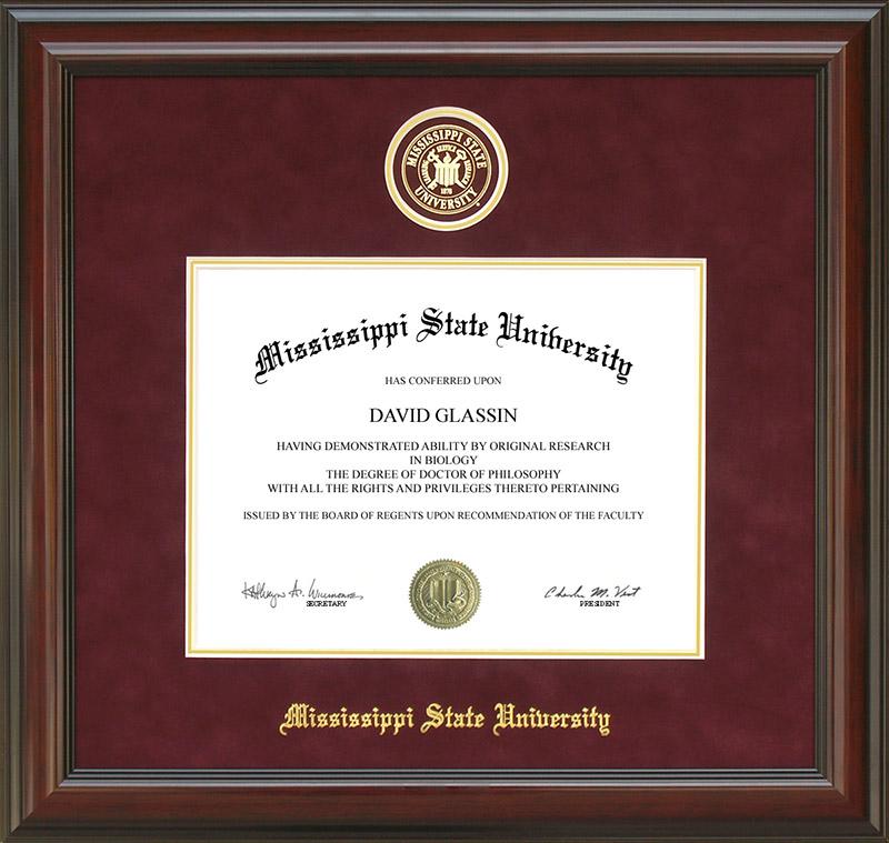 Mississippi State Designer Diploma Frame: Wordyisms