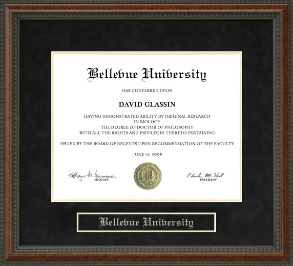Bellevue University Diploma Frame: Wordyisms