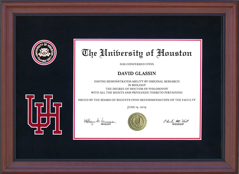 University Of Houston Designer Logo Diploma Frame With Recessed Seal