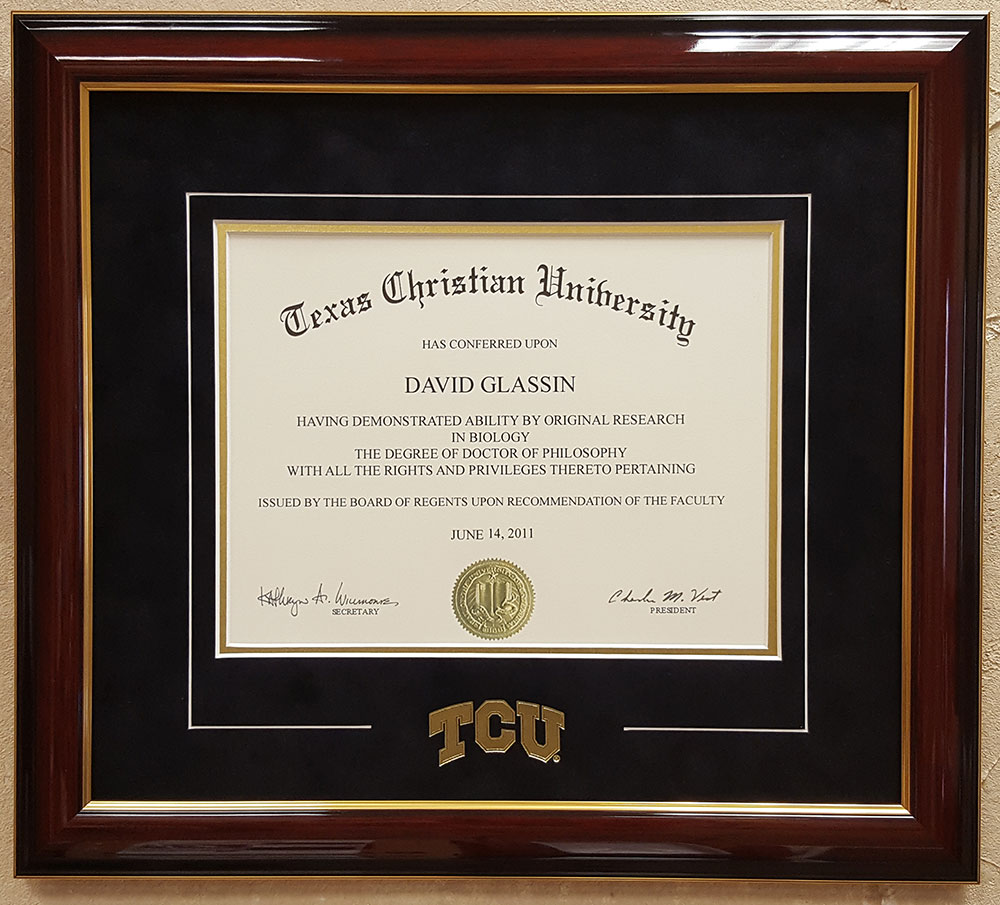 TCU Logo Diploma Frame in Black Suede by Wordyisms